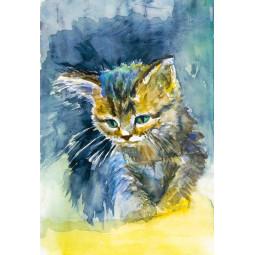 Одеяло - Синьо коте